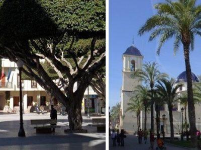 Almoradí y Dolores entre los 68 municipios valencianos con toque de queda
