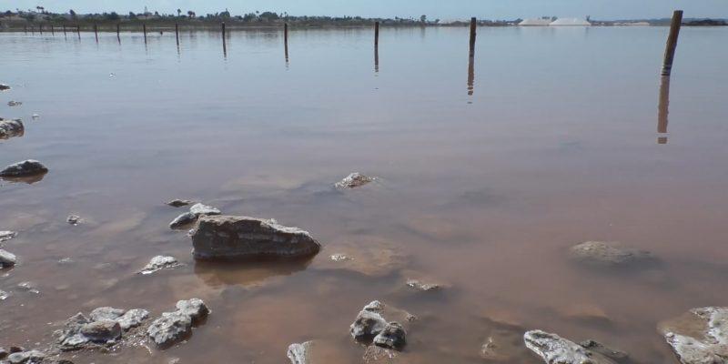 La FGUA visita la Laguna Rosa de las Salinas de Torrevieja